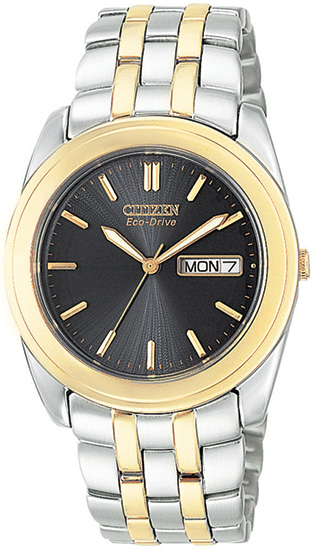 Citizen Two Ton Eco-Drive 180 Black Dial BM8224-51E