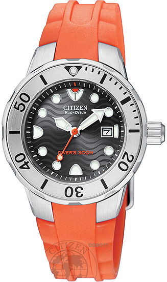 looking for a s seiko or citizen dive
