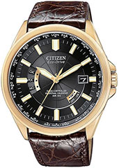 Citizen  CB0013-12E Watch