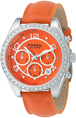 Fossil  CH2562 Watch