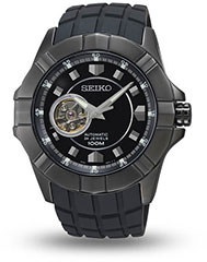 Seiko Premier SSA079 Watch